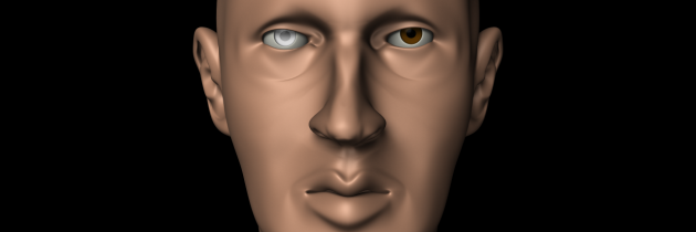 First Realistic Head